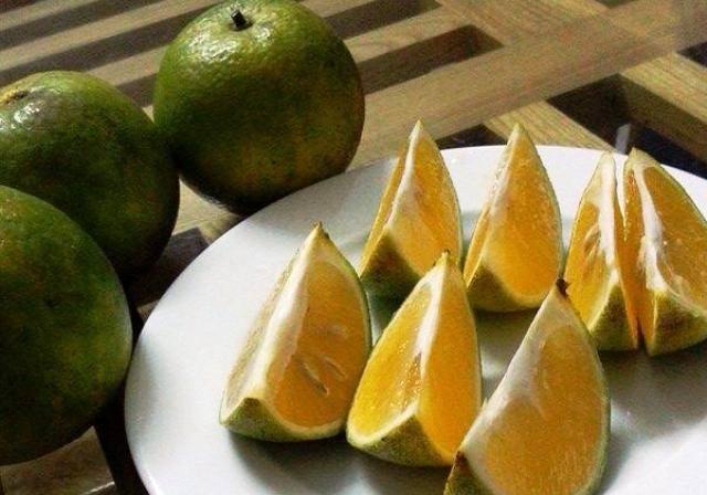 Bảo quản cam giữ được hương vị và chất dinh dưỡng