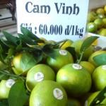 Cam vinh 1kg giá bao nhiêu tiền ?