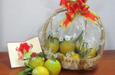 Mua Cam Vinh làm quà biếu